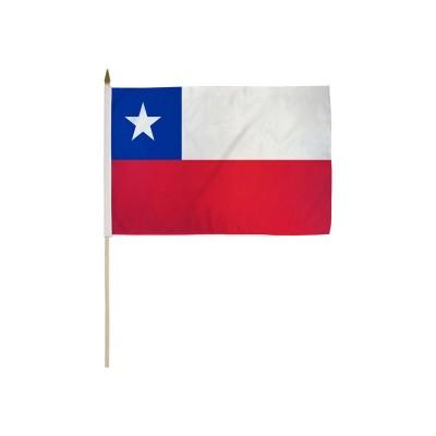 Bandiera Cile 30 x 20 cm