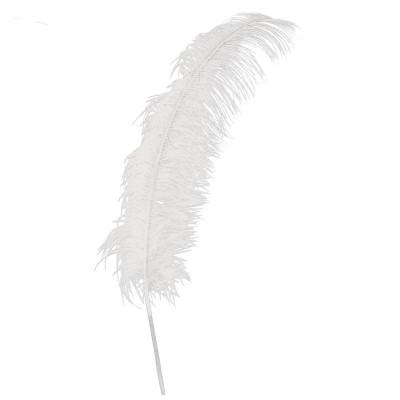 Piume di Struzzo Bianca cm 50 - 12 pz